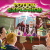 Potion Explosion - Cover - fonte: bgg